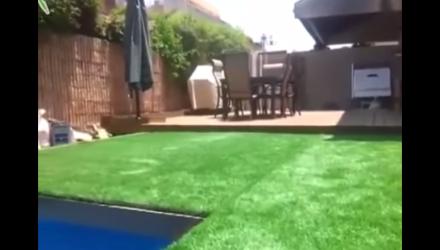 Der richtige Pool - Video