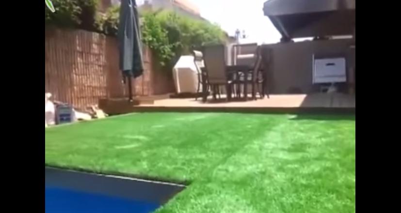 Der richtige Pool – Video