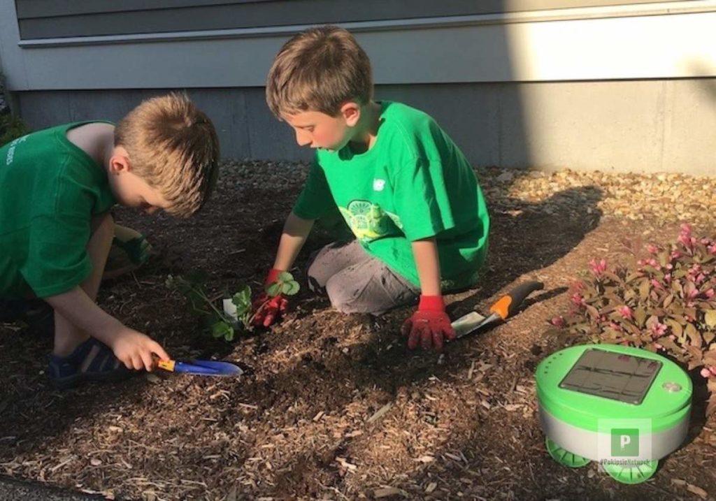 Tertill - der Unkrautroboter für euren Garten