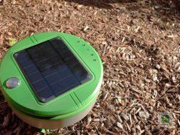 Tertill – der Unkrautroboter für euren Garten