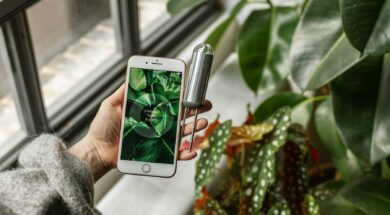 FYTA Sensor und App