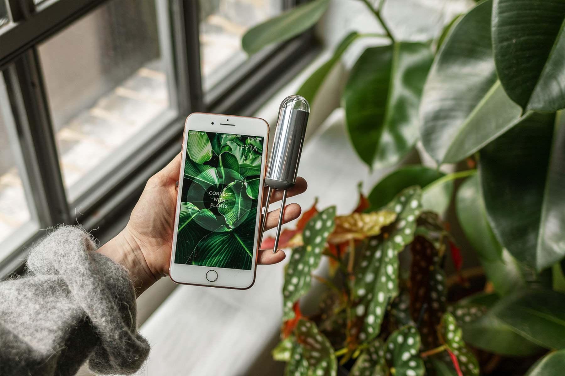 FYTA Beam – Kostengünstiger Pflanzensensor auf Kickstarter – mit Interview